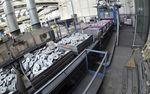钢退火处理 / 大批量生产 / 中等规模生产 / 小批量生产