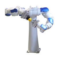 铰接机器人 / 15 轴式 / 搬运 / 包装