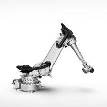 铰接机器人 / 6轴 / 包装 / 搬运