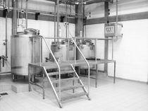 连续式乳化机 / 用于食品行业