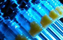 PET塑料瓶灌装机 / 自动 / 饮料 / 果汁